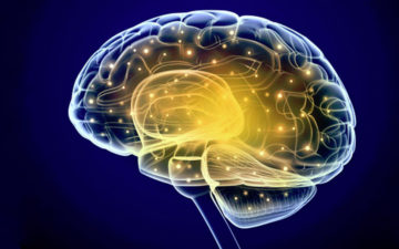 Nanofibres to interact with human brain